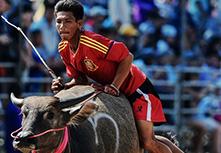 感恩耕牛——泰國春武裏賽牛節開幕